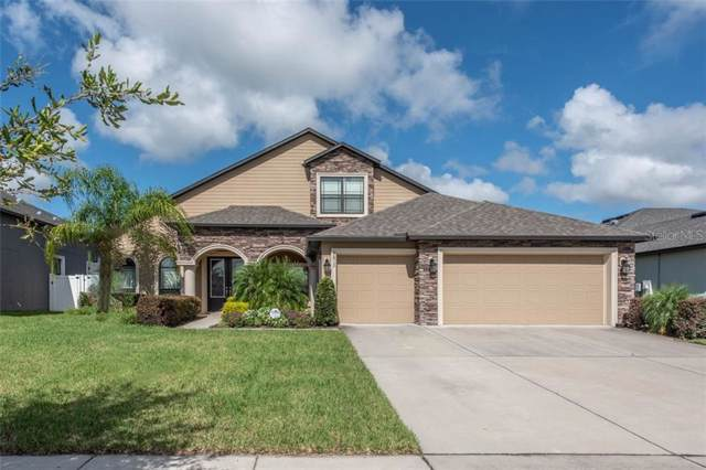 2812 Colewood Lane, Dover, FL 33527 (MLS #T3190856) :: The Duncan Duo Team
