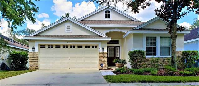 6124 Gannetwood Place, Lithia, FL 33547 (MLS #T3190879) :: The Brenda Wade Team