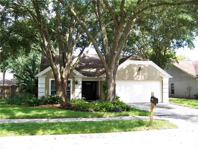 1522 Baker Road, Lutz, FL 33559 (MLS #T3191265) :: Team Pepka
