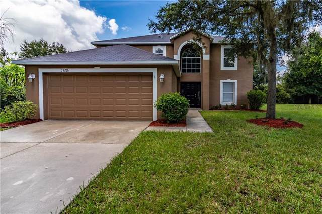 19216 Wood Sage Drive, Tampa, FL 33647 (MLS #T3191603) :: Team Bohannon Keller Williams, Tampa Properties