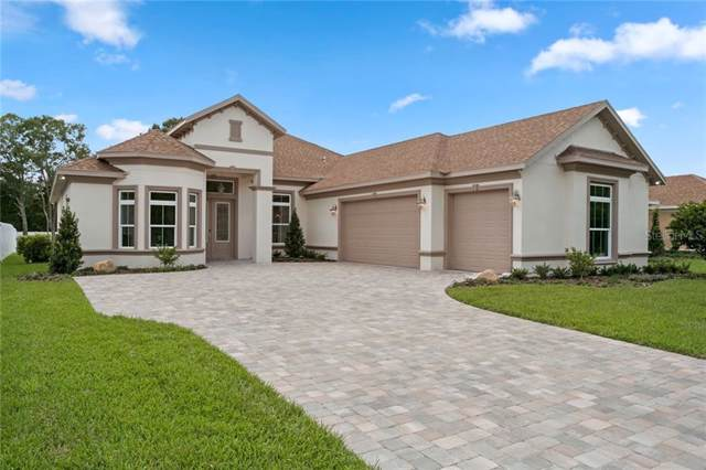 15512 Casey Road, Tampa, FL 33624 (MLS #T3191985) :: McConnell and Associates