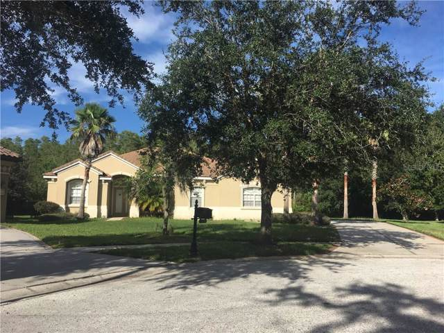 20209 Cane River Way, Tampa, FL 33647 (MLS #T3192427) :: 54 Realty