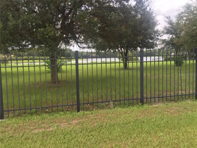 Tarpon Springs Road, Odessa, FL 33556 (MLS #T3192443) :: Rabell Realty Group