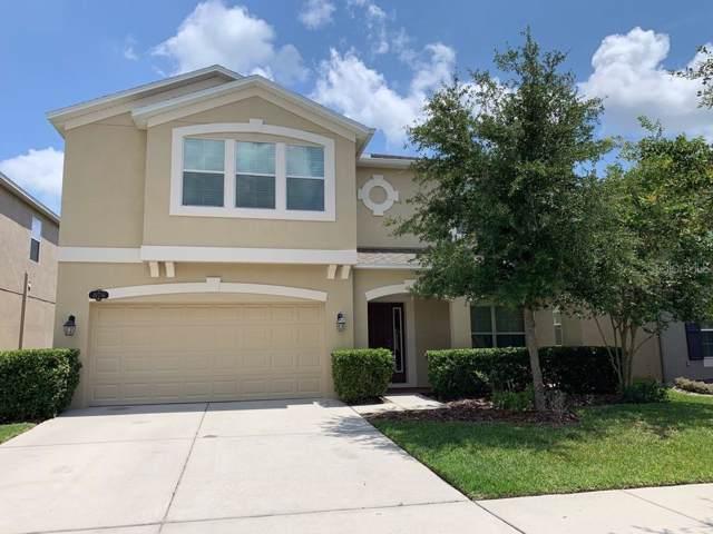 10716 Pictorial Park Drive, Tampa, FL 33647 (MLS #T3193115) :: Florida Real Estate Sellers at Keller Williams Realty