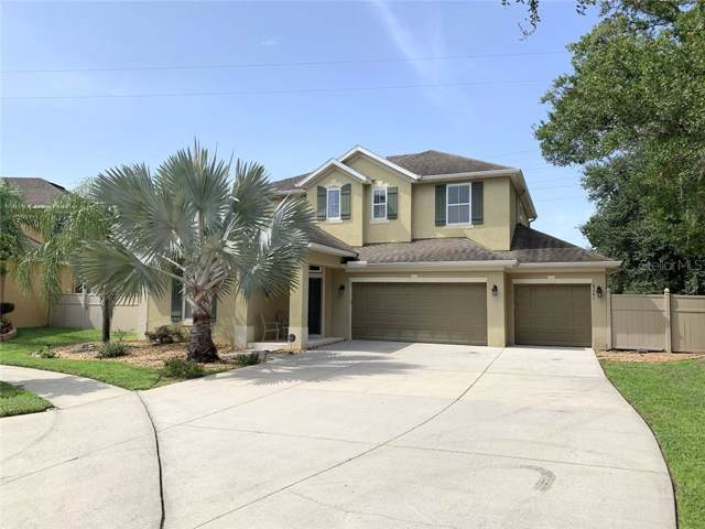 8261 Nectar Ridge Court, Odessa, FL 33556 (MLS #T3193241) :: Team Bohannon Keller Williams, Tampa Properties