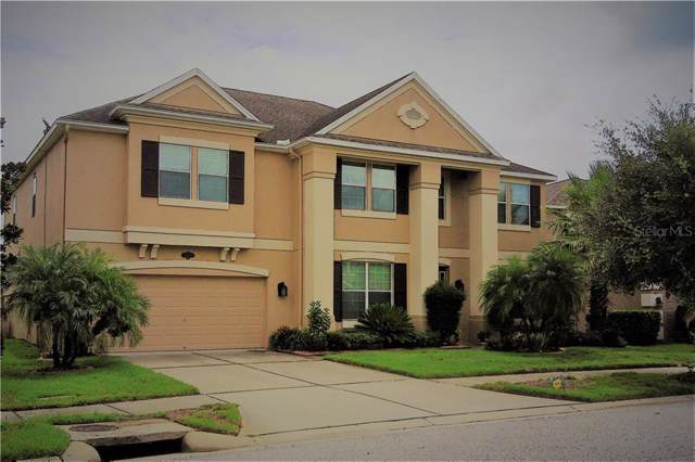 Address Not Published, Tampa, FL 33647 (MLS #T3193287) :: Ideal Florida Real Estate
