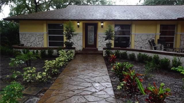 1704 N Riverhill Drive, Temple Terrace, FL 33617 (MLS #T3193443) :: Team 54