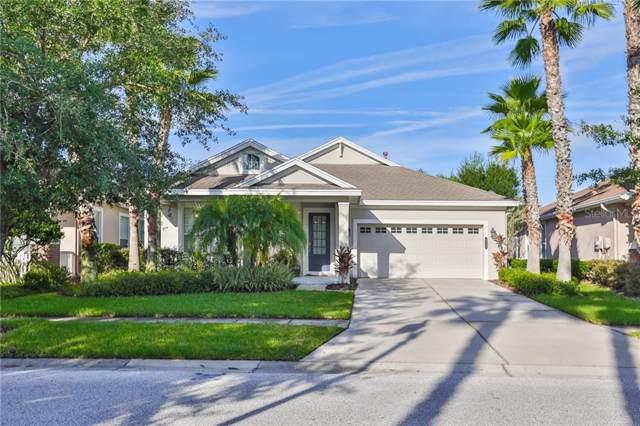 20124 Heritage Point Drive, Tampa, FL 33647 (MLS #T3193505) :: Team Bohannon Keller Williams, Tampa Properties