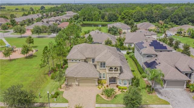 7138 Hatpin Loop, Wesley Chapel, FL 33545 (MLS #T3193767) :: Delgado Home Team at Keller Williams
