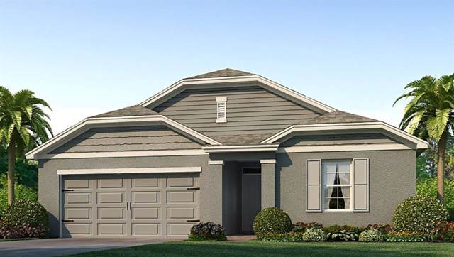 6993 Silverado Ranch Boulevard, Zephyrhills, FL 33541 (MLS #T3194498) :: The Robertson Real Estate Group