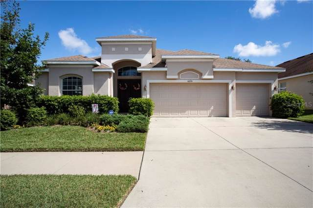 10224 Holland Road, Riverview, FL 33578 (MLS #T3194622) :: Griffin Group
