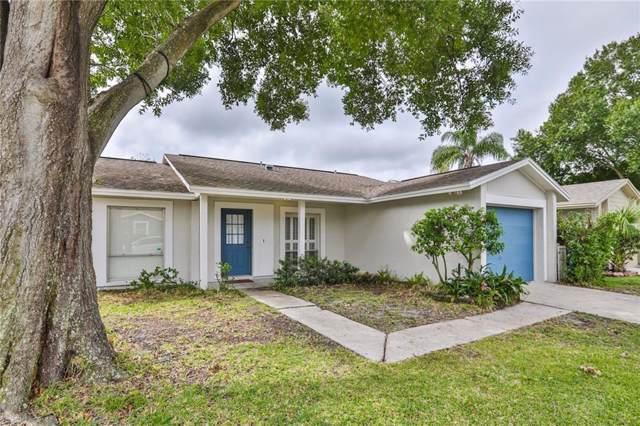 1717 Cinnabar Court, Brandon, FL 33510 (MLS #T3194773) :: Team Pepka