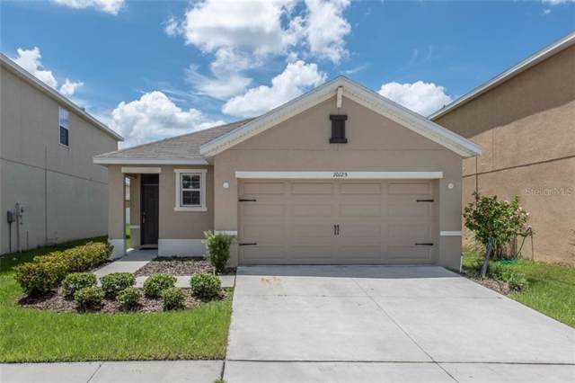10125 Mangrove Well Road, Sun City Center, FL 33573 (MLS #T3194877) :: Cartwright Realty