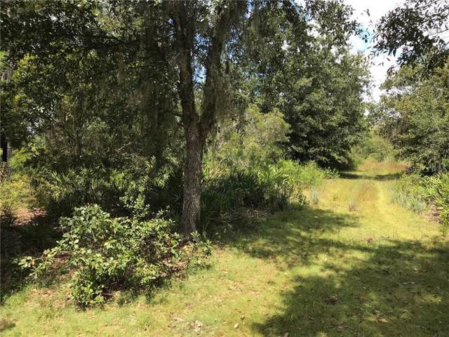 10# Hilda Ann Road, Zephyrhills, FL 33540 (MLS #T3197687) :: Griffin Group