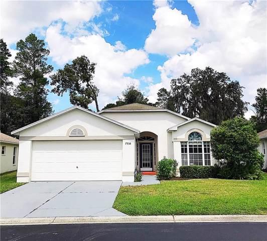 Address Not Published, New Port Richey, FL 34654 (MLS #T3198194) :: Burwell Real Estate