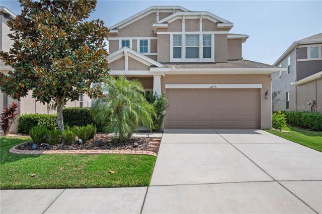 32770 Windelstraw Drive, Wesley Chapel, FL 33545 (MLS #T3198579) :: RE/MAX Realtec Group