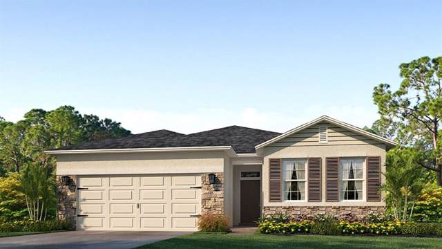 13804 Camden Crest Terrace, Lakewood Ranch, FL 34211 (MLS #T3198580) :: Medway Realty
