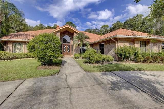Address Not Published, Oldsmar, FL 34677 (MLS #T3199817) :: Paolini Properties Group