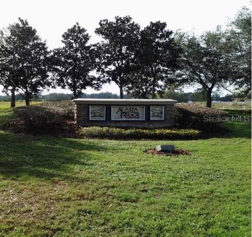 111 Alafia Estates Lane, Plant City, FL 33567 (MLS #T3199846) :: The Light Team