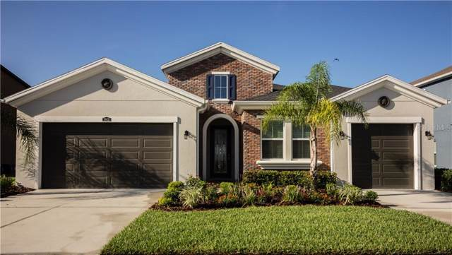 29431 Picana Ln, Wesley Chapel, FL 33543 (MLS #T3201268) :: Team Bohannon Keller Williams, Tampa Properties