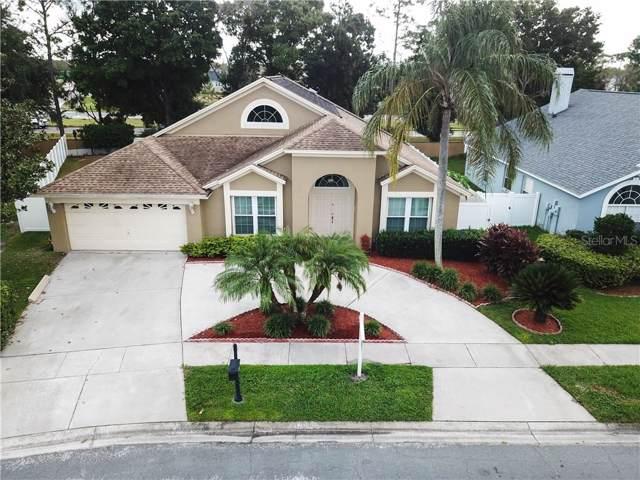 18525 Kingbird Drive, Lutz, FL 33558 (MLS #T3201606) :: Keller Williams Realty Peace River Partners