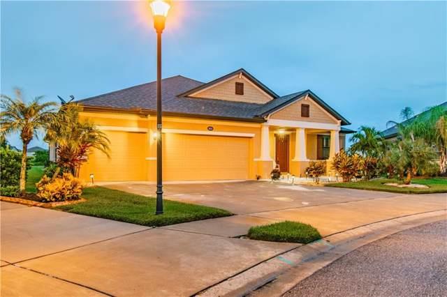 11634 Iris Spring Court, Riverview, FL 33579 (MLS #T3201914) :: Griffin Group