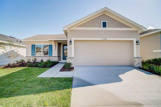 13308 Magnolia Valley Drive, Clermont, FL 34711 (MLS #T3202070) :: Team Bohannon Keller Williams, Tampa Properties