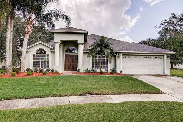 10003 Katie Court, Tampa, FL 33647 (MLS #T3202303) :: 54 Realty