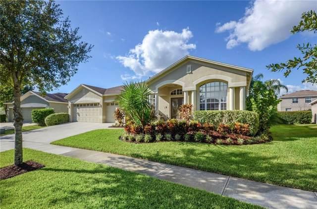 16113 Bridgedale Drive, Lithia, FL 33547 (MLS #T3202405) :: Florida Real Estate Sellers at Keller Williams Realty