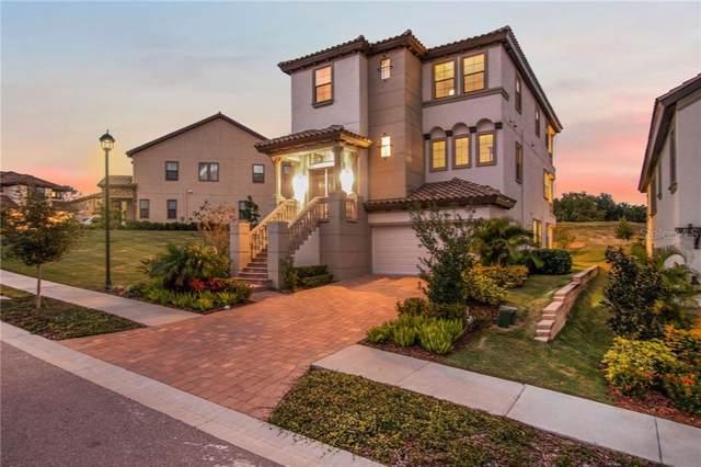 3585 Torino Lane, Palm Harbor, FL 34683 (MLS #T3202407) :: Armel Real Estate