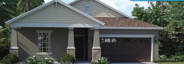 10803 Purple Martin Boulevard, Riverview, FL 33579 (MLS #T3203176) :: Griffin Group
