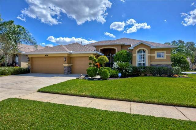 12817 Stanwyck Circle, Tampa, FL 33626 (MLS #T3203303) :: Cartwright Realty