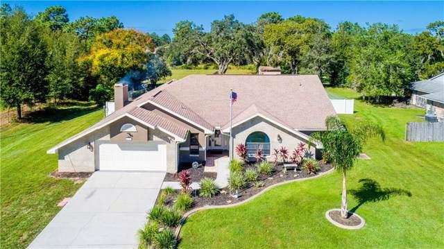 4009 Black Oak Trail, Brooksville, FL 34604 (MLS #T3204103) :: Baird Realty Group