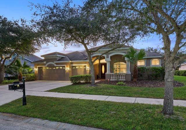 6615 Thornton Palms Drive, Tampa, FL 33647 (MLS #T3204196) :: Cartwright Realty