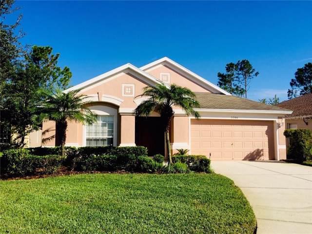 3206 Wheeling Court, Land O Lakes, FL 34638 (MLS #T3204642) :: Cartwright Realty