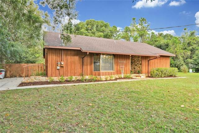 36815 Patton Road, Dade City, FL 33523 (MLS #T3205247) :: Cartwright Realty