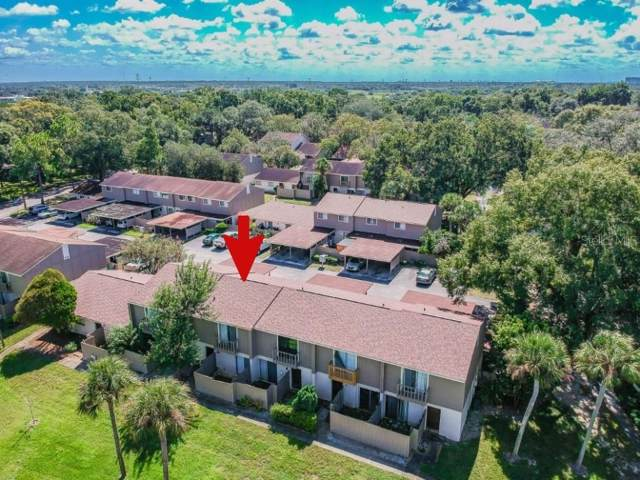 7908 Citrus Drive, Temple Terrace, FL 33637 (MLS #T3205300) :: Carmena and Associates Realty Group