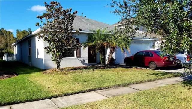 20264 Merry Oak Avenue, Tampa, FL 33647 (MLS #T3205646) :: NewHomePrograms.com LLC