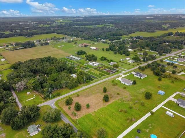 1902 Berry Road, Plant City, FL 33567 (MLS #T3205940) :: GO Realty