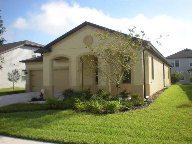 7986 Olive Brook Drive, Wesley Chapel, FL 33545 (MLS #T3206230) :: Premier Home Experts
