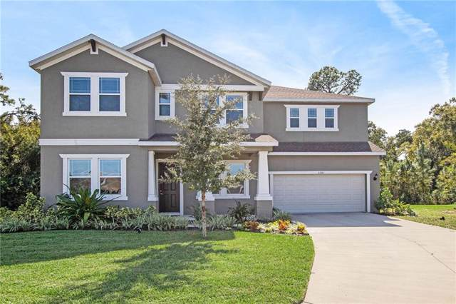 3336 Gina Court, Holiday, FL 34691 (MLS #T3206408) :: Griffin Group