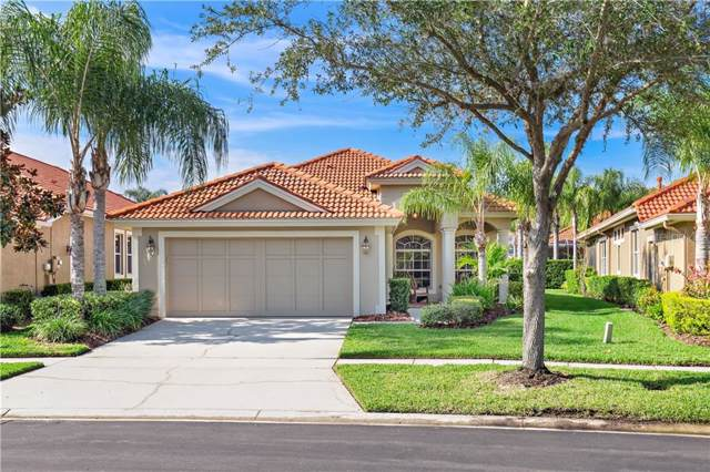 14525 Mirasol Manor Ct, Tampa, FL 33626 (MLS #T3208186) :: Griffin Group