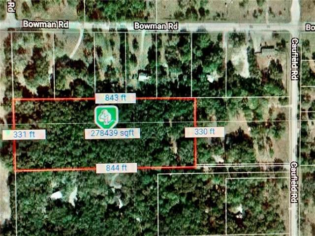 17841 Caufield Road, Spring Hill, FL 34610 (MLS #T3208816) :: Griffin Group