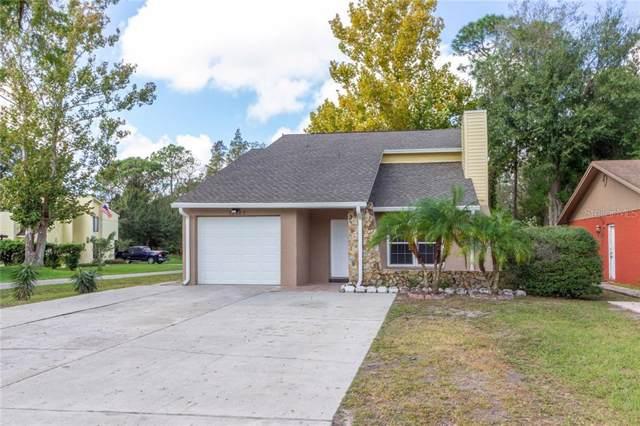11202 N 51ST Street N, Tampa, FL 33617 (MLS #T3208989) :: Griffin Group