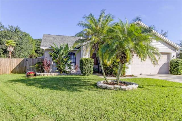 11227 Clayridge Drive, Tampa, FL 33635 (MLS #T3209056) :: Griffin Group