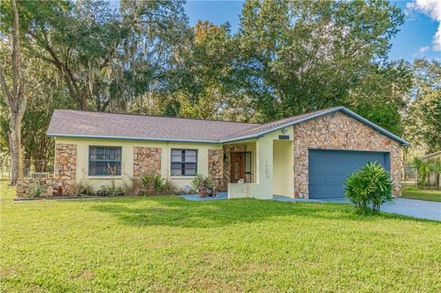 5937 Caroline Drive, Wesley Chapel, FL 33545 (MLS #T3209541) :: Griffin Group