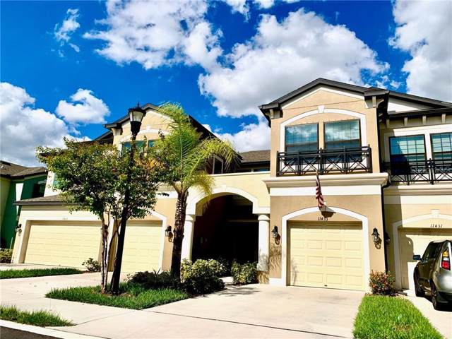 11433 Crowned Sparrow Lane, Tampa, FL 33626 (MLS #T3209707) :: Griffin Group
