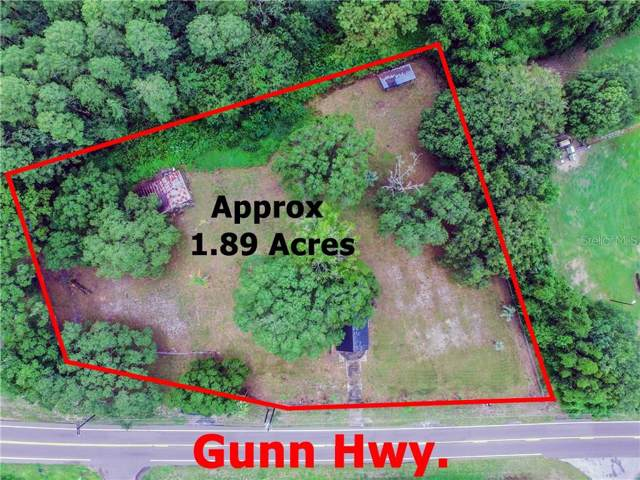 17311 Gunn Highway, Odessa, FL 33556 (MLS #T3209715) :: Alpha Equity Team