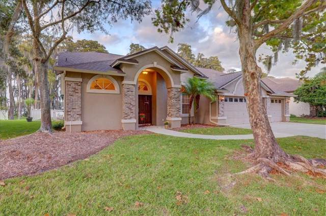 19634 Lake Osceola Lane, Odessa, FL 33556 (MLS #T3210783) :: Griffin Group