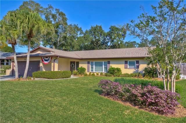 53 Harbor Woods Circle, Safety Harbor, FL 34695 (MLS #T3211451) :: Charles Rutenberg Realty